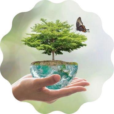 Unser Beitrag zum Umweltschutz und soziale Verantwortung für die Erde