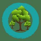 Baumpflanzung Aufforstung