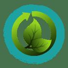 Vegan rein pflanzlich nachhaltig