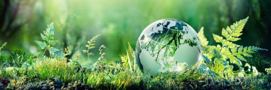 Unser Beitrag zum Umweltschutz für unseren einzigen Planeten