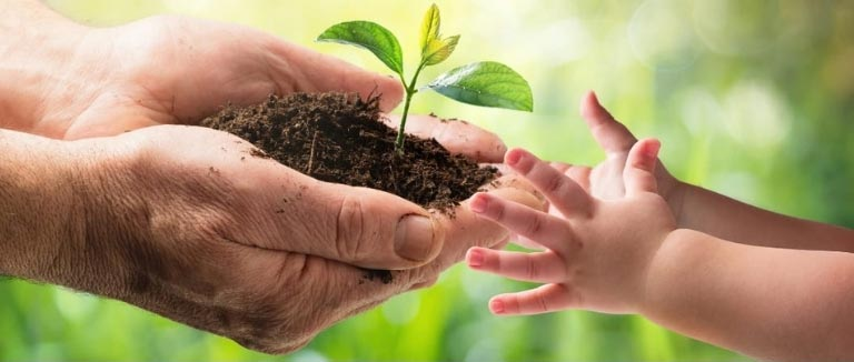 Bäume pflanzen beim Einkaufen Erde Zukunft