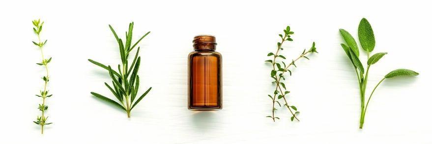 Qualität ätherischer Öle Sevie bio